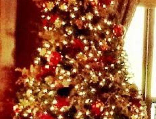 Θερμές ευχές για όμορφα Χριστούγεννα και μια καλή χρονιά!